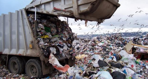 fuente: http://www.ecologiaverde.com/