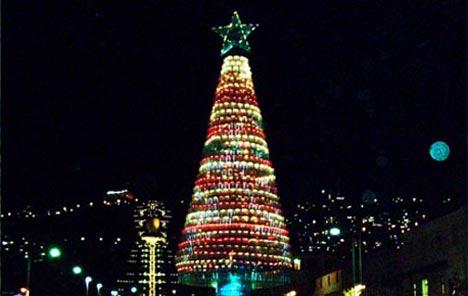 haifa-israel-recycled-plastic-bottle-christmas-tree